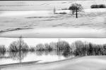 Zimska simetrija